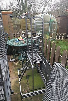parrot play stand idea for African grey Amazon