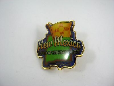 Vintage Collectible Pin: State of New Mexico Fun Design