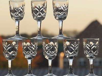 Webb Corbett Crystal Liqueur/port Glasses Set Of 8.