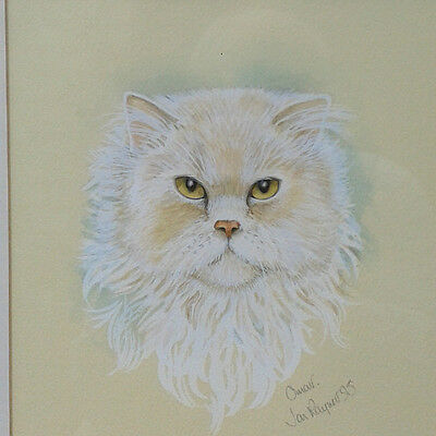 Framed signed original watercolour study of a cat.