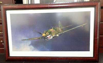 Tiger by Jack Fellows P-40 Warhawk  Flying Tigers  Aviation Art Print Framed
