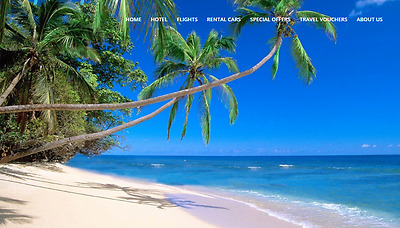Outstanding Hotel and Travel Website  Free Installation + Free Hosting