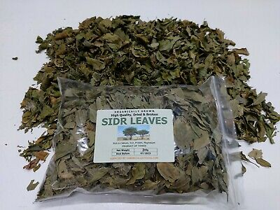 Dried / broken  sidr leaves 100g . from yemen -buy 100g and get 100g free