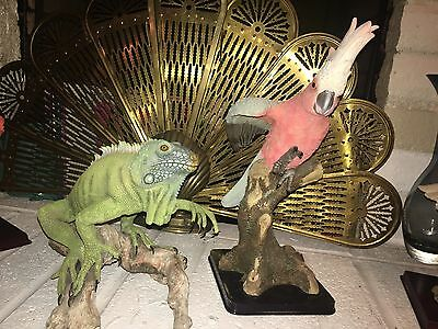 "Large Hand Painted Iguana Sculpture On  Branch 22"" Across Including 16"" Parrot"