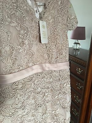 Jacques Vert Mother Of The Bride/groom Dress Size 16 Bnwt