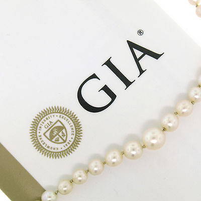 """Antique GIA Akoya Saltwater Pearl Graduated 22"""" Necklace Filigree Sterling Clasp"""