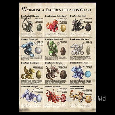 *AGE OF DRAGONS* Anne Stokes Wyrmling & Egg Identification Greeting Card (AN77)