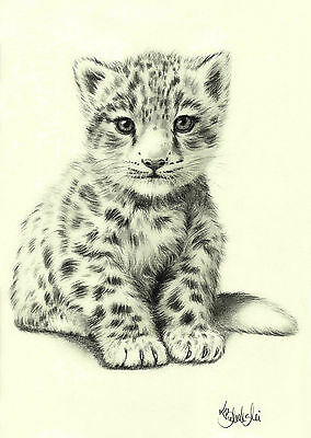 WILD ANIMAL-SNOW LEOPARD A4 PRINT of the original pencil drawing