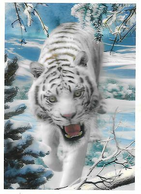 snow white tiger 3D Lenticular raster Holographic Stereoscopic Picture Wall Art