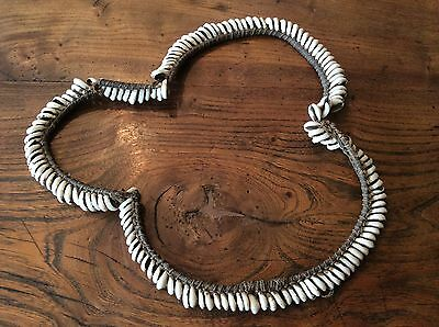 cowrie shell necklace/belt, Pacific Islands