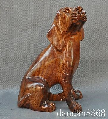 old chinese huanghuali wood carved wealth lovely Domestic dogs Canine statue A