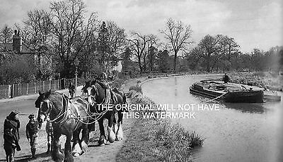 Shire Horses Pulling Barge River Wey Guildford 1955 Vintage Mounted Print Canals