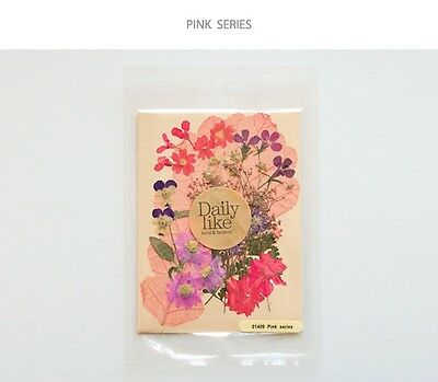 miss oh/Dry flower DIY  pink series real flower  100 x 140 (mm) Pressed flowers
