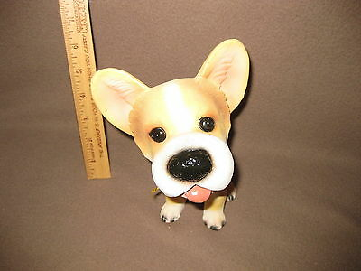 BIG NOSE DOG 7 -- Lovable cute adorable and Big Nose -- Chihuahua