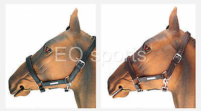 FREE P&P Beautiful Padded Leather Headcollar silver fittings Blk&Brn X/F-F-C-P