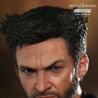 The Wolverine Hottoys Hot Toys Mms220 Mms 220 1/6 Action Figure Pa Aq4423