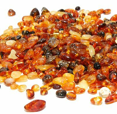 Genuine Loose Baltic Amber Beads Chips Natural Mixed Holed 10 g