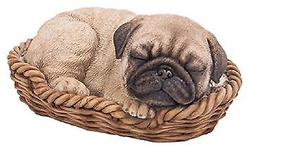 Pug Puppy In Basket By Vivid Arts Indoor Or Outdoor New Boxed