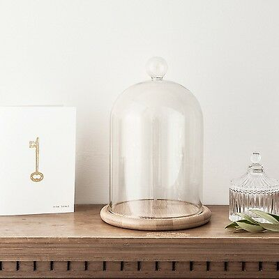 Large Glass Cloche Bell Jar Dome with Bamboo Tray by Lights4fun Large