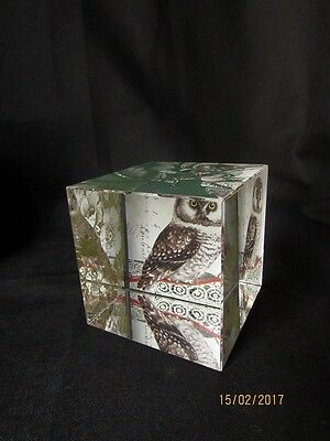 Nice Square Glass Paperweight, Owl & Floral Graphics