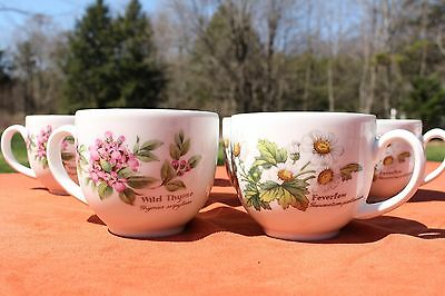 "ROYAL WORCESTER HERBS ""Wild Thyme"" or ""Feverfew"" Tea Cup - More Available"