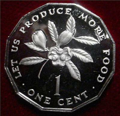 Only 24.000 Minted Proof 1976 1 Cent Jamaica**beautiful Coin**