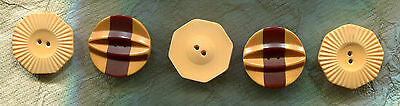 BUTTON SET~Butterscotch Bakelite Medium Size Including Two Cookies