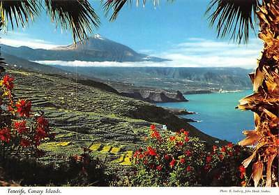 Spain Tenerife The Northern landscape of the Island