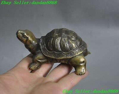 Old china Chinese fengshui bronze longevity animal turtle tortoise lucky statue