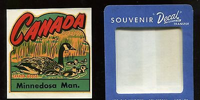 Vintage Canada, Canada Goose, Minnedosa Manitoba Travel Decal Label