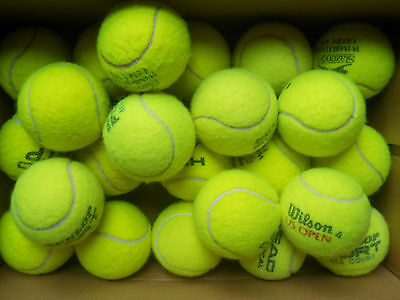 20 Premium Used Tennis Balls, Wilson, Head, Dunlop, etc Great Dog Toys