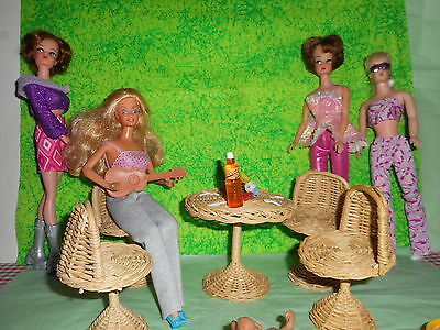Vintage Barbie ~ Tammy Wicker Patio Set ~ Clothing ~ Dog ~ Shoes ~ Guitar ~ Flo