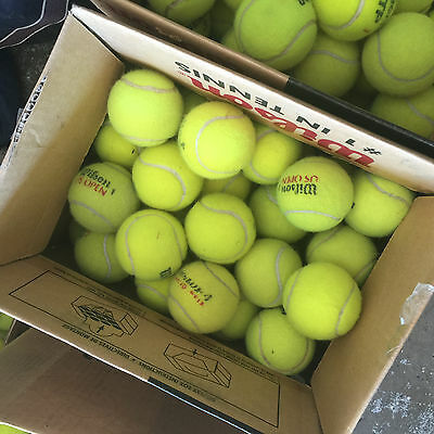 30 used tennis balls Mixed Most are Wilson