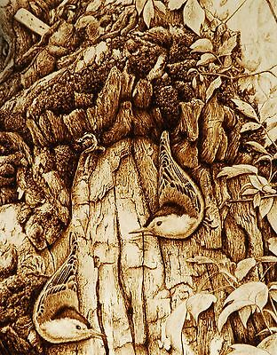 """Nuthatches """"seeing Double"""" Pyrography/drawing With Fire/woodburning Avian Art"""