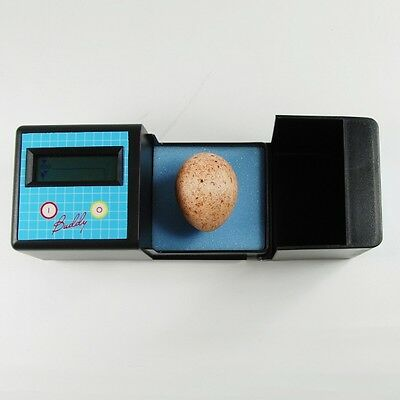 Egg Buddy - Digital Egg Heart Monitor for Birds and Reptiles