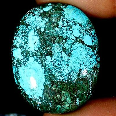 52.45 CTs Natural Designer TIBET TURQUOISE Oval Cabochon Untreated A++ Gemstone