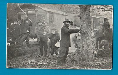POSTCARD ESSEX  GYPSIES IN EPPING FOREST  ** rare **  must see ** #224