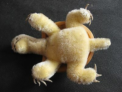 Vintage Steiff Germany turtle 1950s glass eyes mohair button no tag