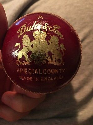 Dukes Special County Cricket Ball - Test Match Quality