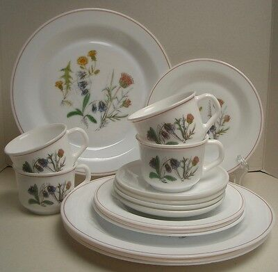 Gorgeous Arcopal France Floral 16 piece Set, Very Good Used Condition