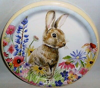 """Easter Paper Plates  10 ct   8 3/4"""" Luncheon Plates  SPRING RABBIT"""
