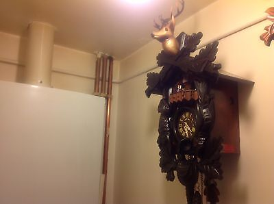 1DAY HURBERT HERR BLACK FOREST MUSICAL CUCKOO CLOCK Very Good Condition
