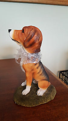 Beagle Dog Bobble Head Nodder New In Box Puppy