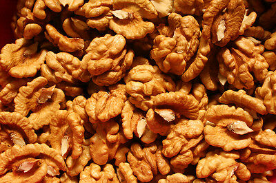 Walnut walnuts 1KG Raw Nuts Kernels Superfood ONLY £13.9 - FREE UK P&P