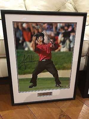Authentic Signed Tiger Woods 2008 US Open Framed Picture