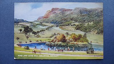 Old Postcard Pond and Cave Hill, Bellevue, Belfast. Valentines A1060