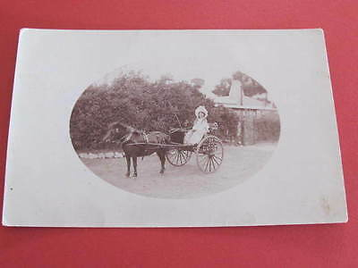 Girl on Horse and Sulky RPPC Postcard