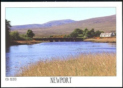 Postcard - View In Newport Co  Mayo -  Unposted By Insight Photo Peter Zouller