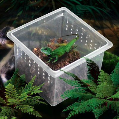 10x Feeding Container for Pet Reptiles Snakes Insects Tarantula Tanks Box H1