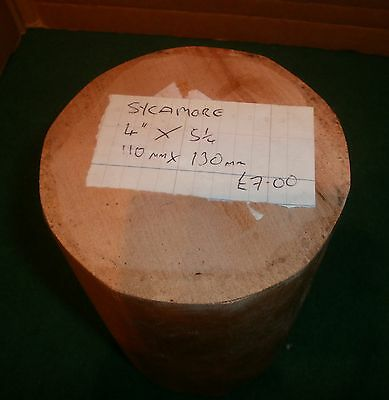 Wood Turning Blank - Waxed Sycamore - 110mm x 130mm